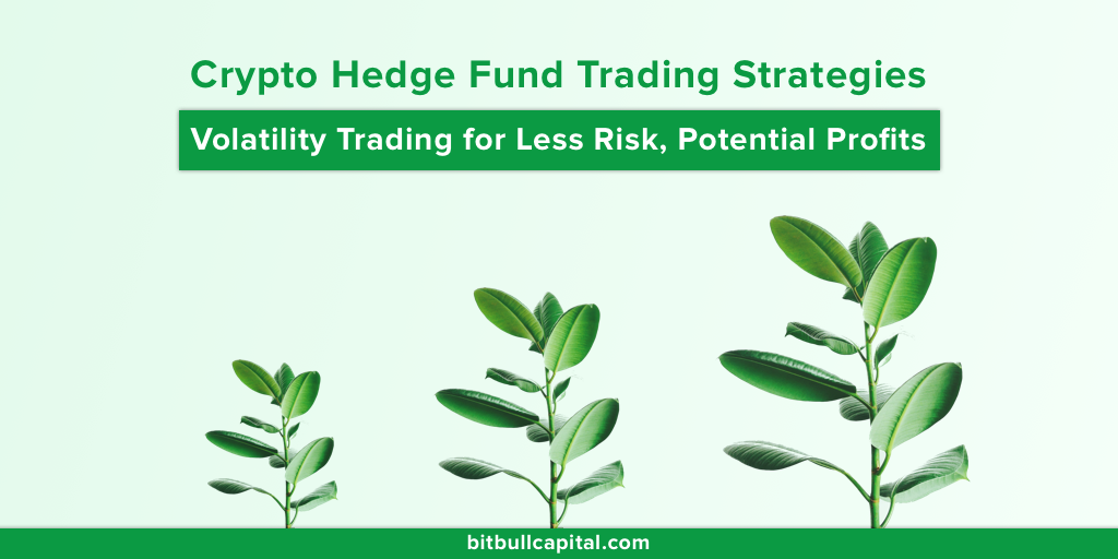 BitBull Capital's Crypto Hedge Fund Trading Strategies: Volatility Trading for Less Risk, Potential Profits