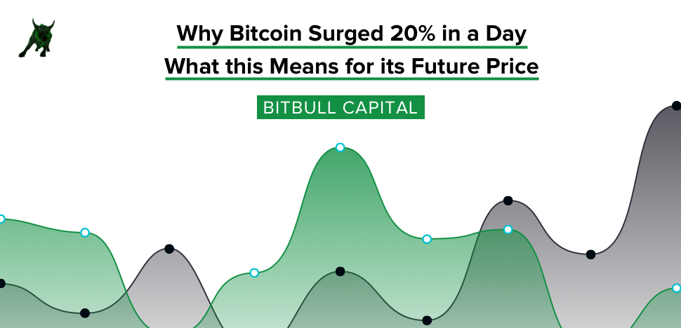 Why Bitcoin Surged 20% in a Day, and What this Means for its Future Price